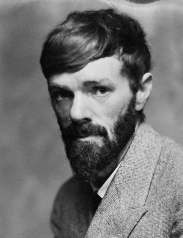 dh lawrence essays novel Free essays available online are good but they will not follow the guidelines of your particular writing assignment if you need a custom term paper on cliff notes: dh lawrence's the rainbow: quest, passage, awakening, and change in relationships, you can hire a professional writer here to write you a high quality authentic essay.